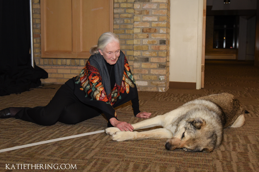 Home for Life Spring Gala featuring Jane Goodall
